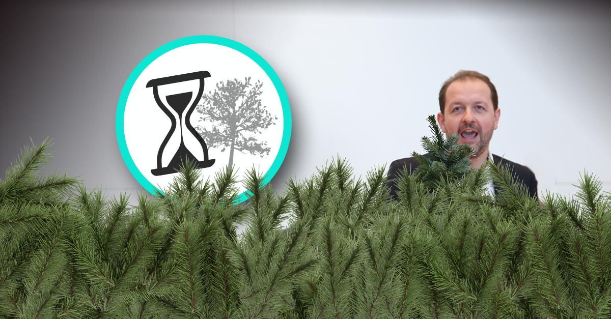 """""""Baiers-Baum-Masterplan"""": Die Botschaft hör ich wohl, allein mir fehlt der Glaube"""